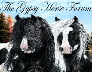 The Gypsy Horse Group Forum Index